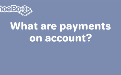 What are payments on account?
